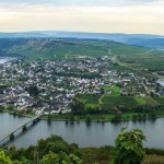 Vineyards on the banks of the Mosel River